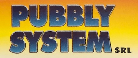 PUBBLY SYSTEM
